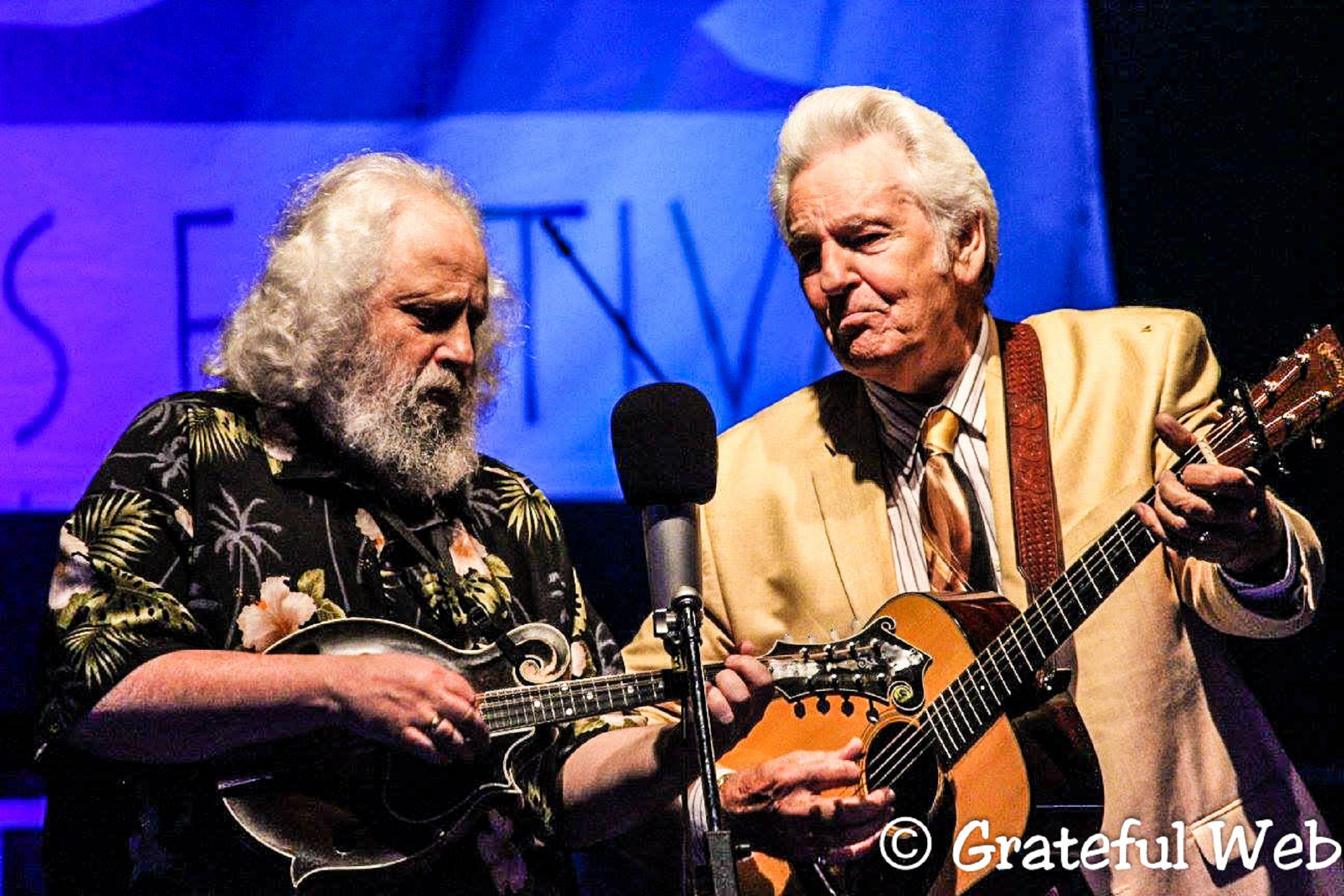Grey Fox Bluegrass Festival 2016 | Review
