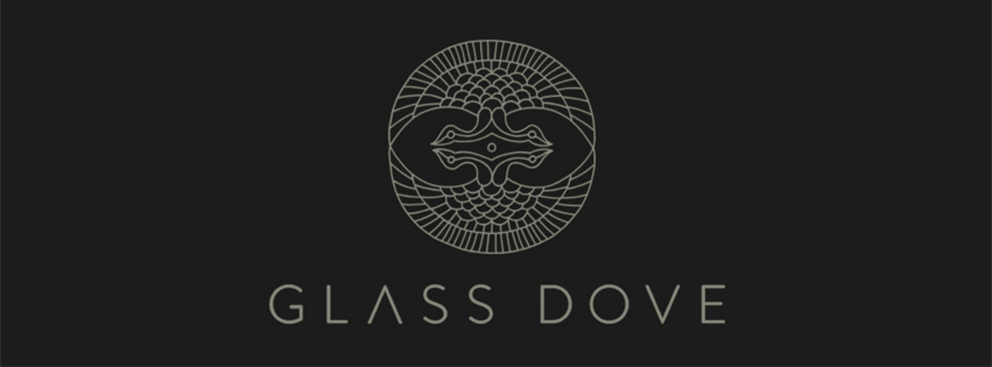 "Glass Dove release video for ""Terrible Secrets"""