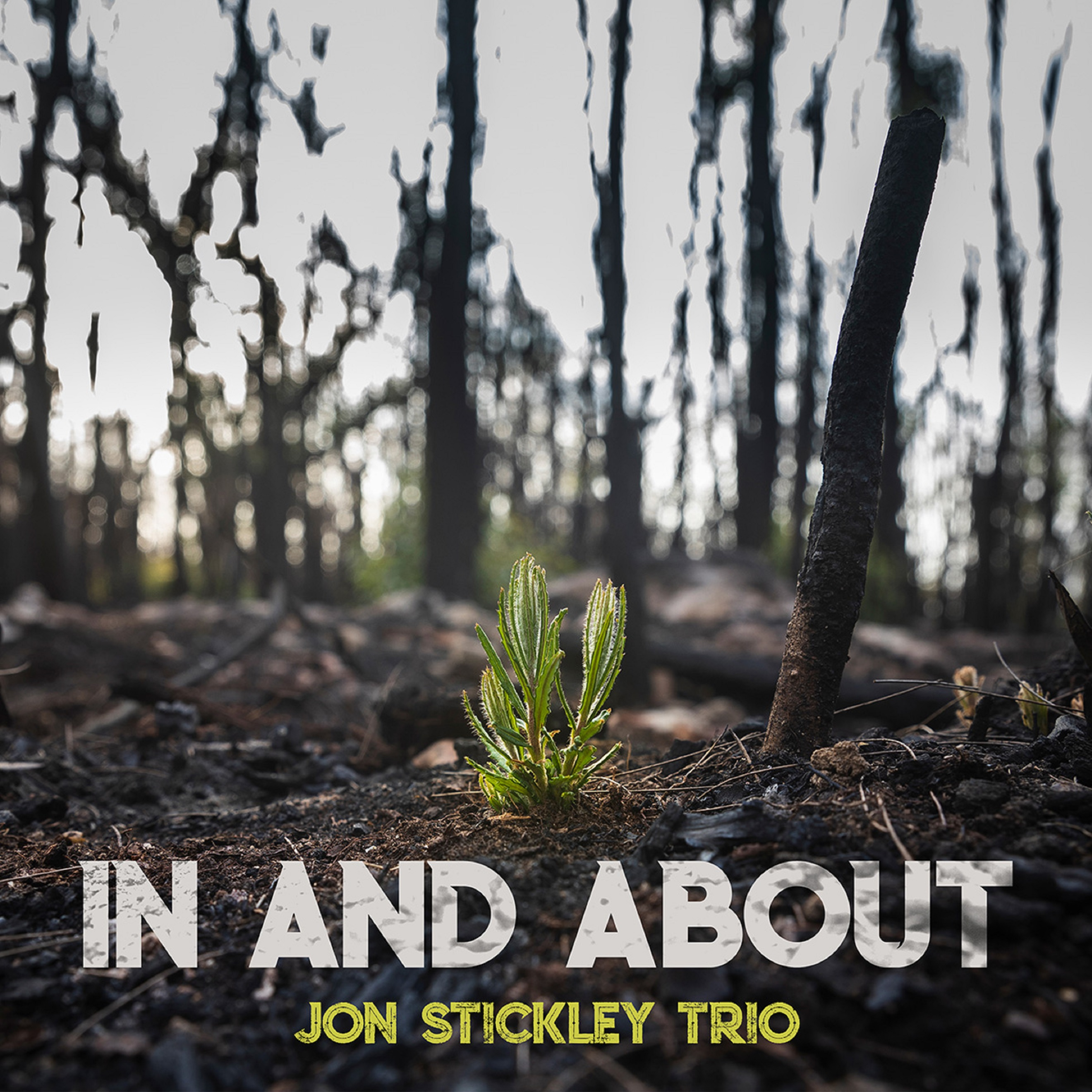 Jon Stickley Trio's 'In And About' captures shifting states of mind