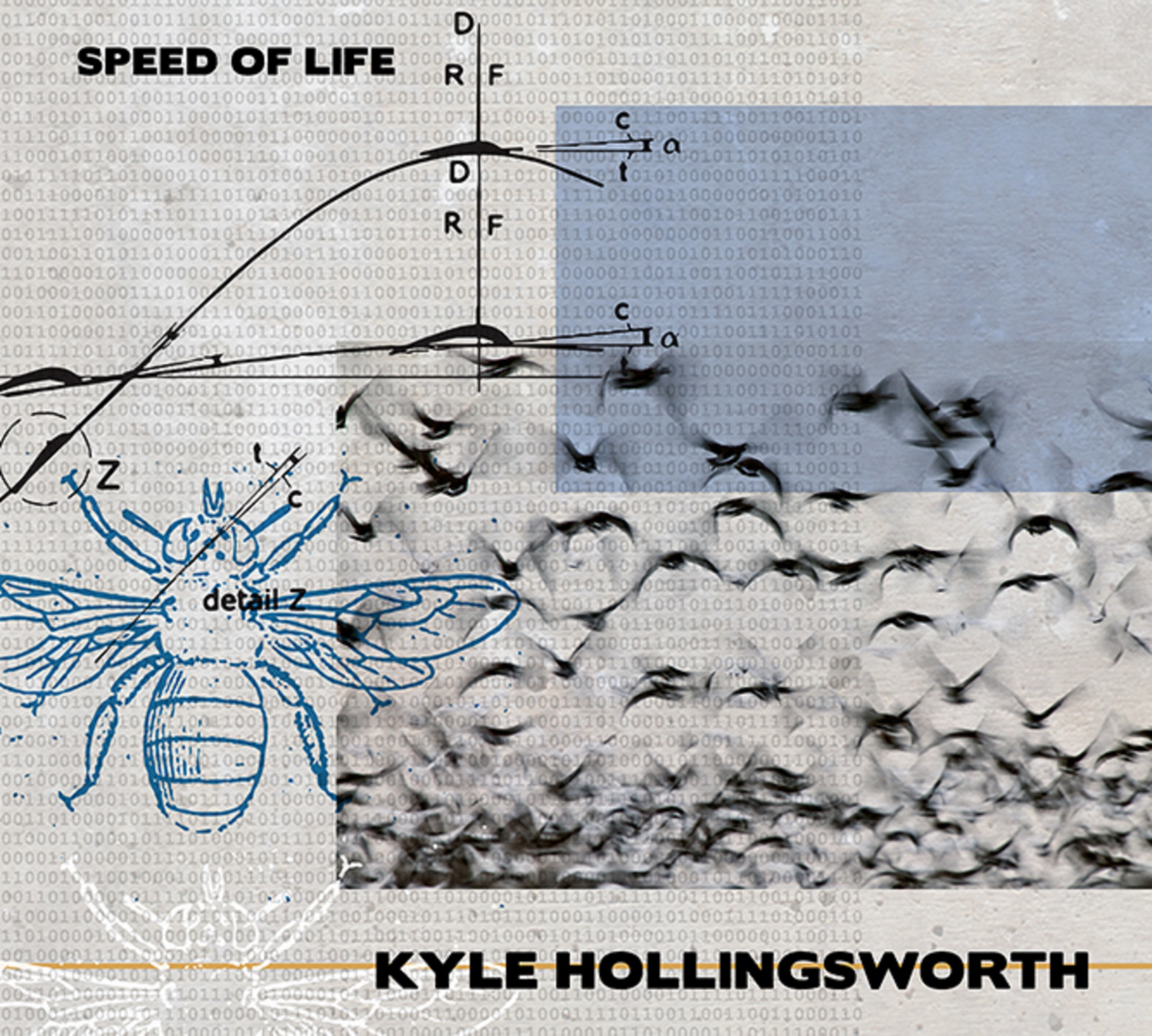 Kyle Hollingsworth | Speed of Life | Review