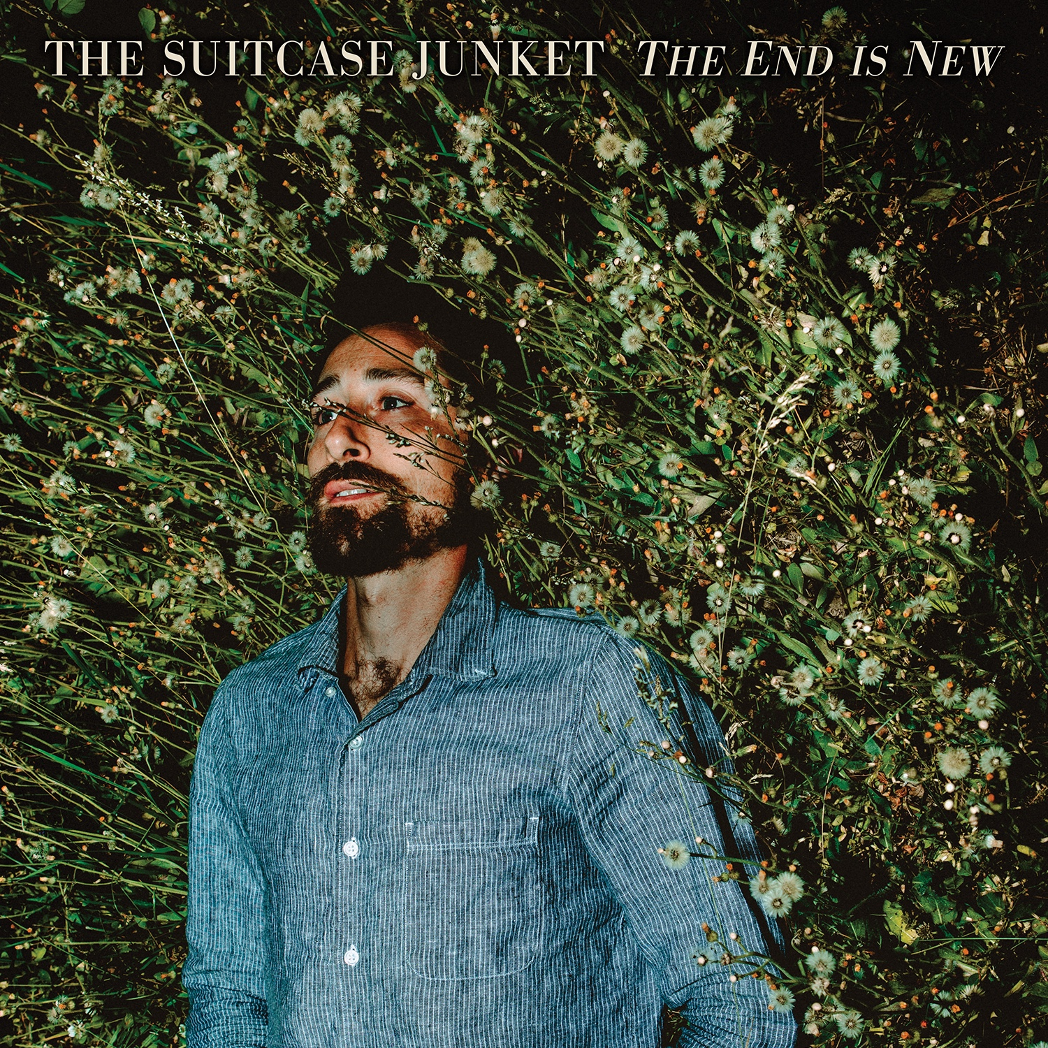 The Suitcase Junket Releases Searing New Track and Video