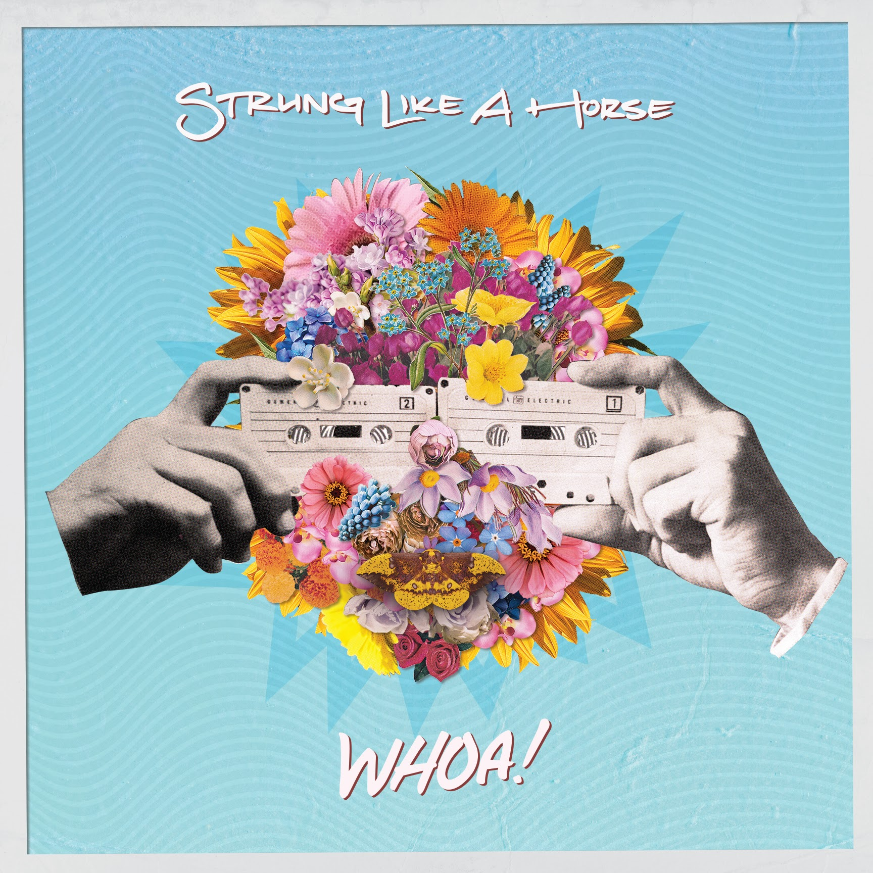 Strung Like A Horse Release Debut Studio Album 'WHOA!'