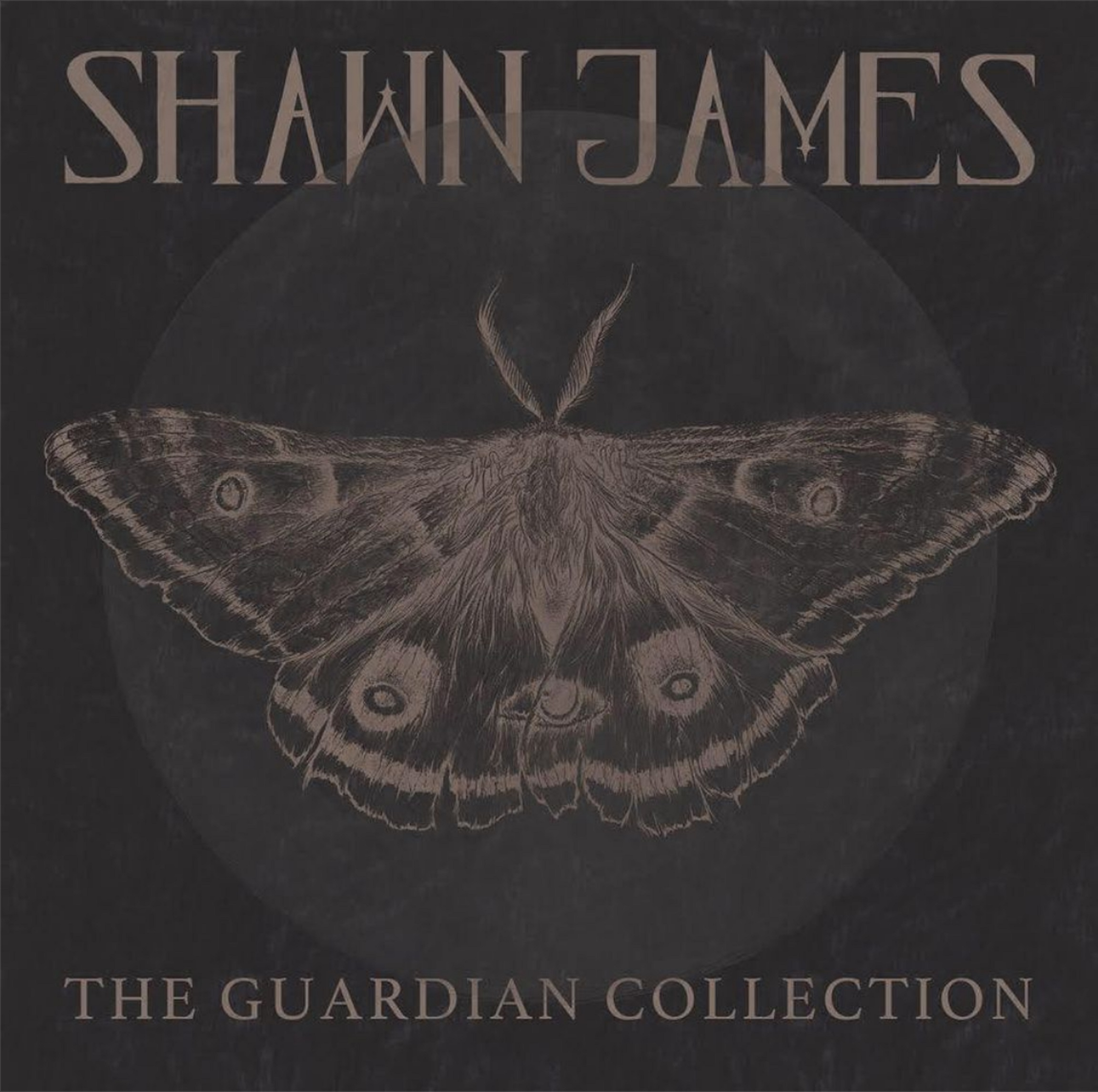 "Shawn James ""The Guardian Collection"" out now"