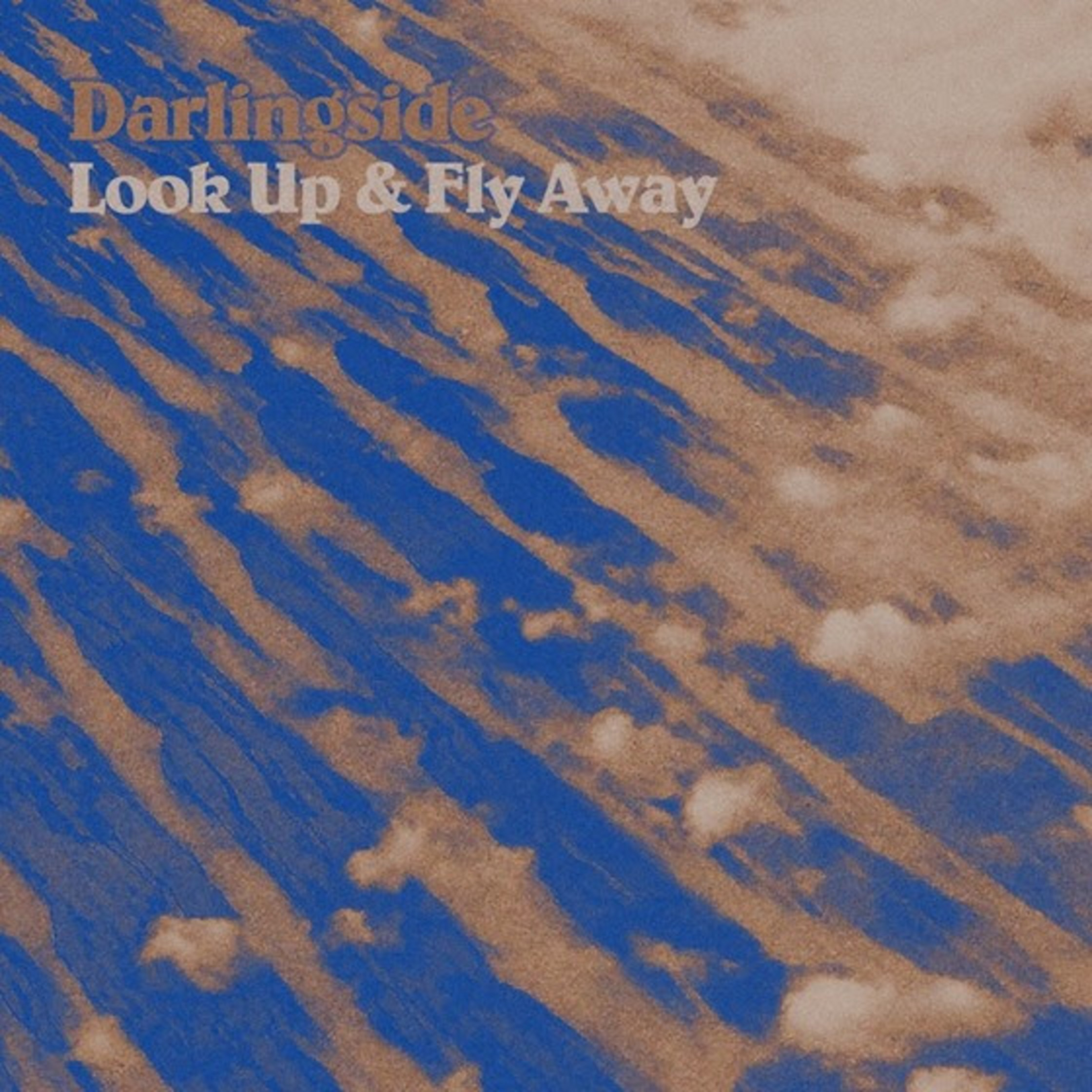 Darlingside Announce Tour and New EP LOOK UP & FLY AWAY
