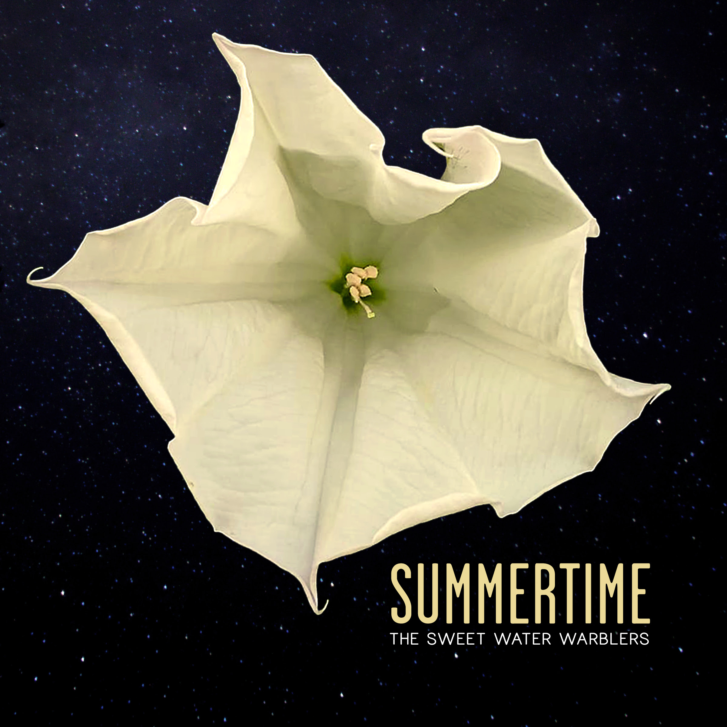 "The Sweet Water Warblers Release New Single ""Summertime"""