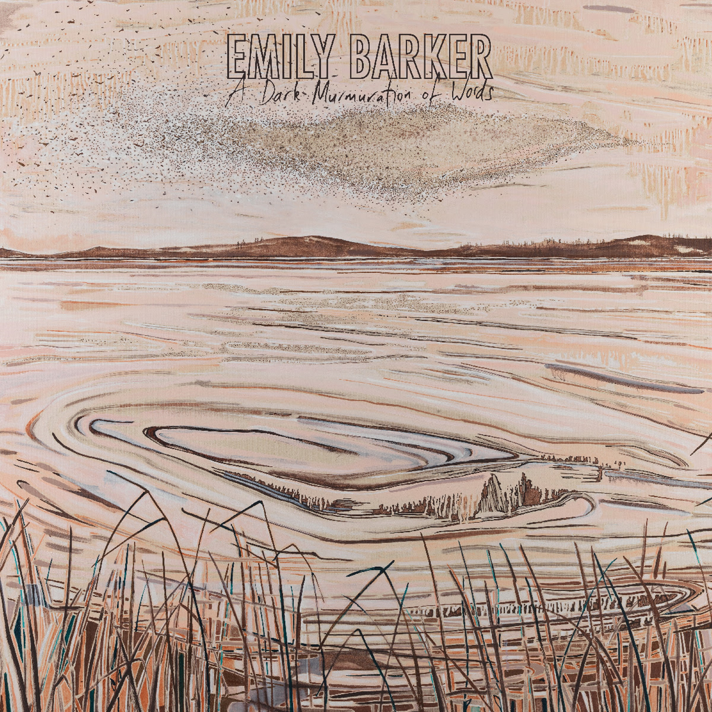 Emily Barker | A Dark Murmuration of Words | Review