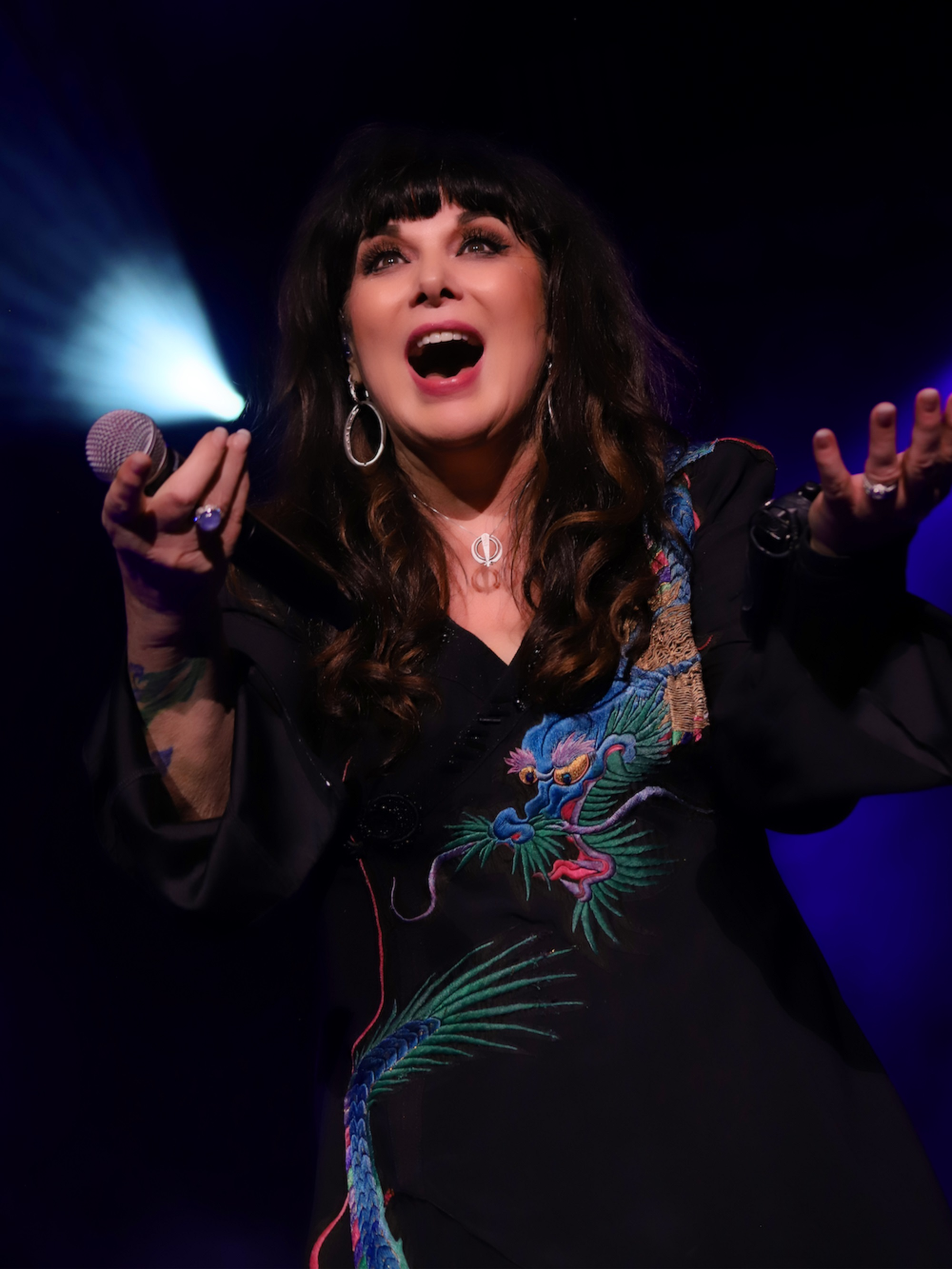 Ann Wilson (Heart) confirms North American headline tour