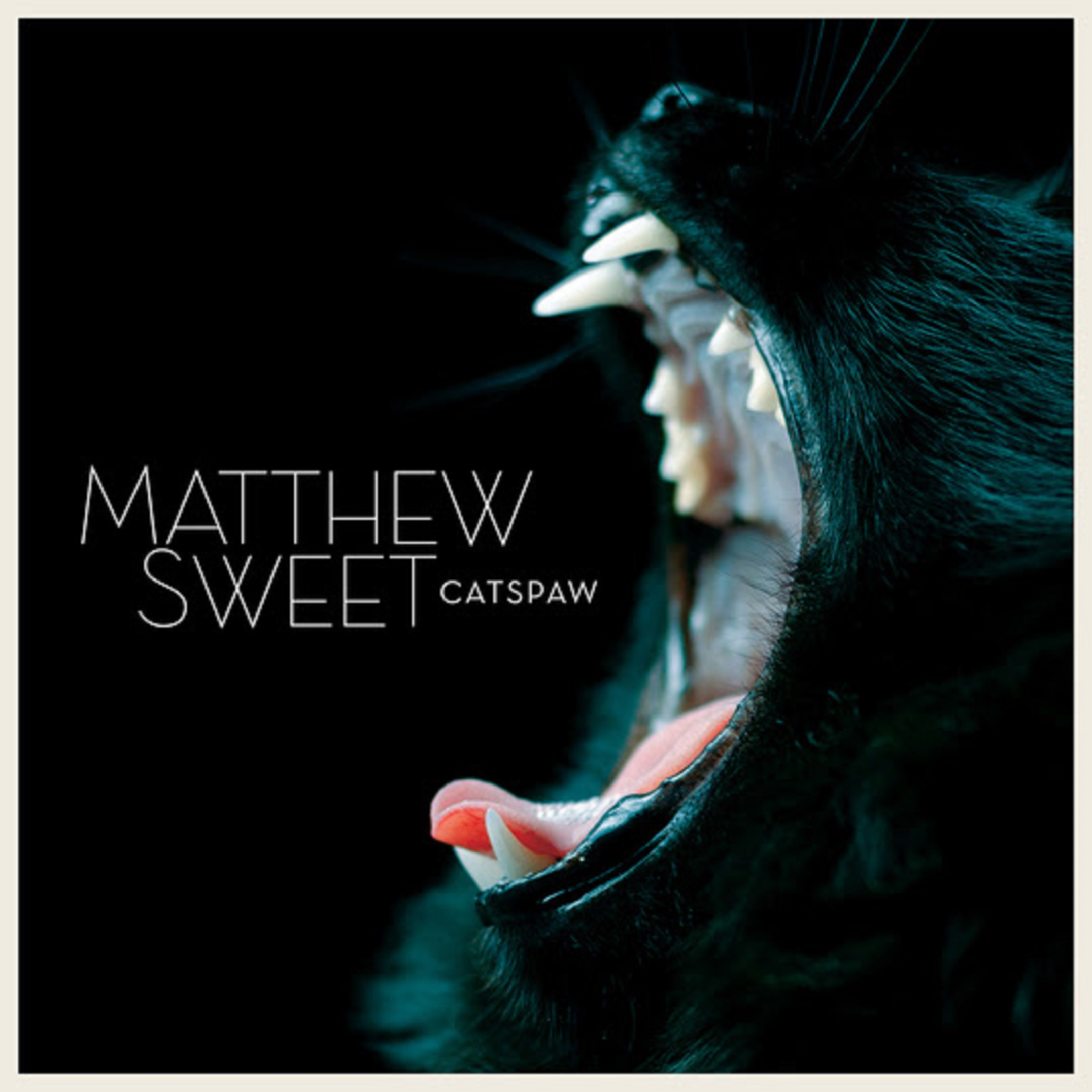 Matthew Sweet Plugs In And Gets Dark On Catspaw