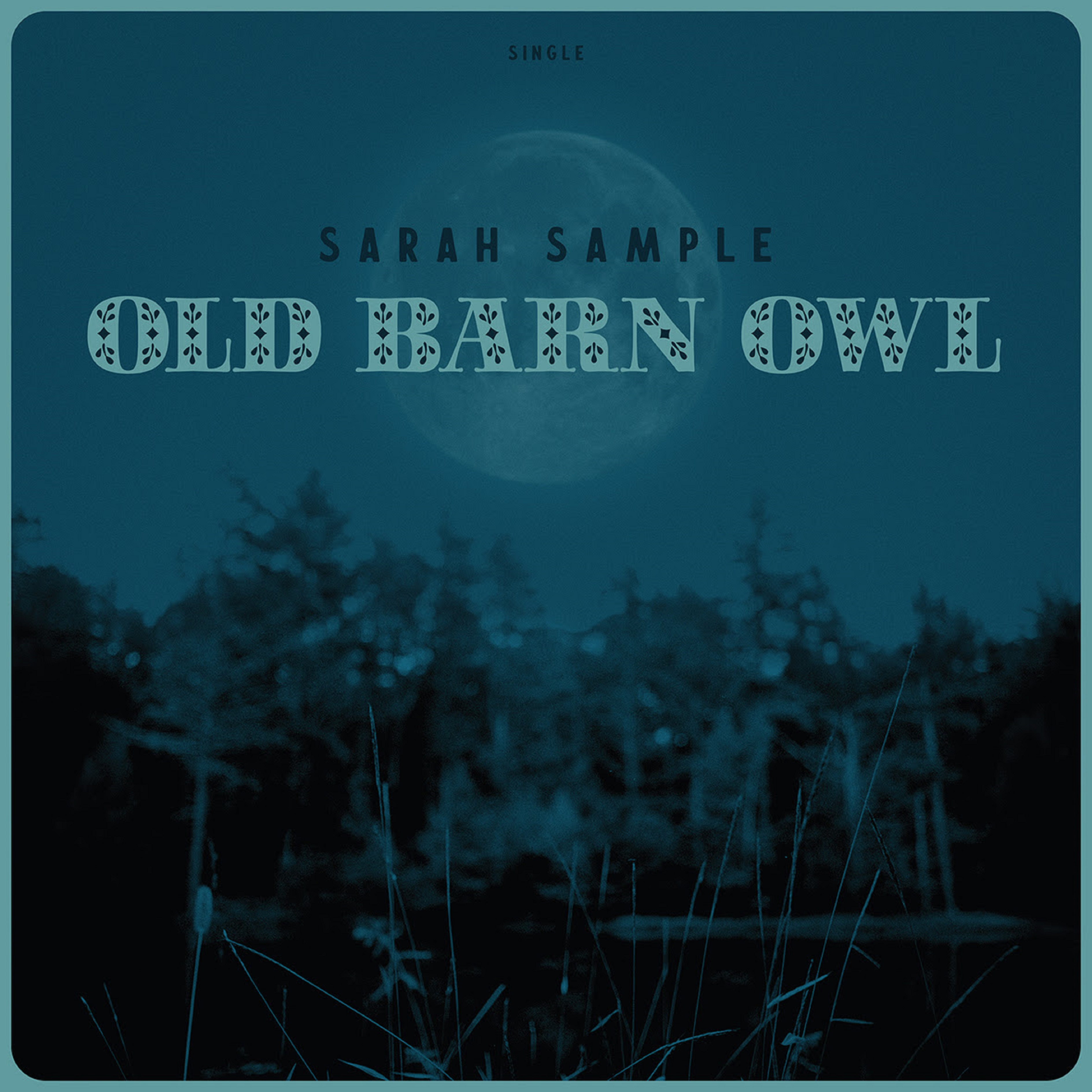 "Sarah Sample's ""Old Barn Owl"" Finds Catharsis in the Mystical"
