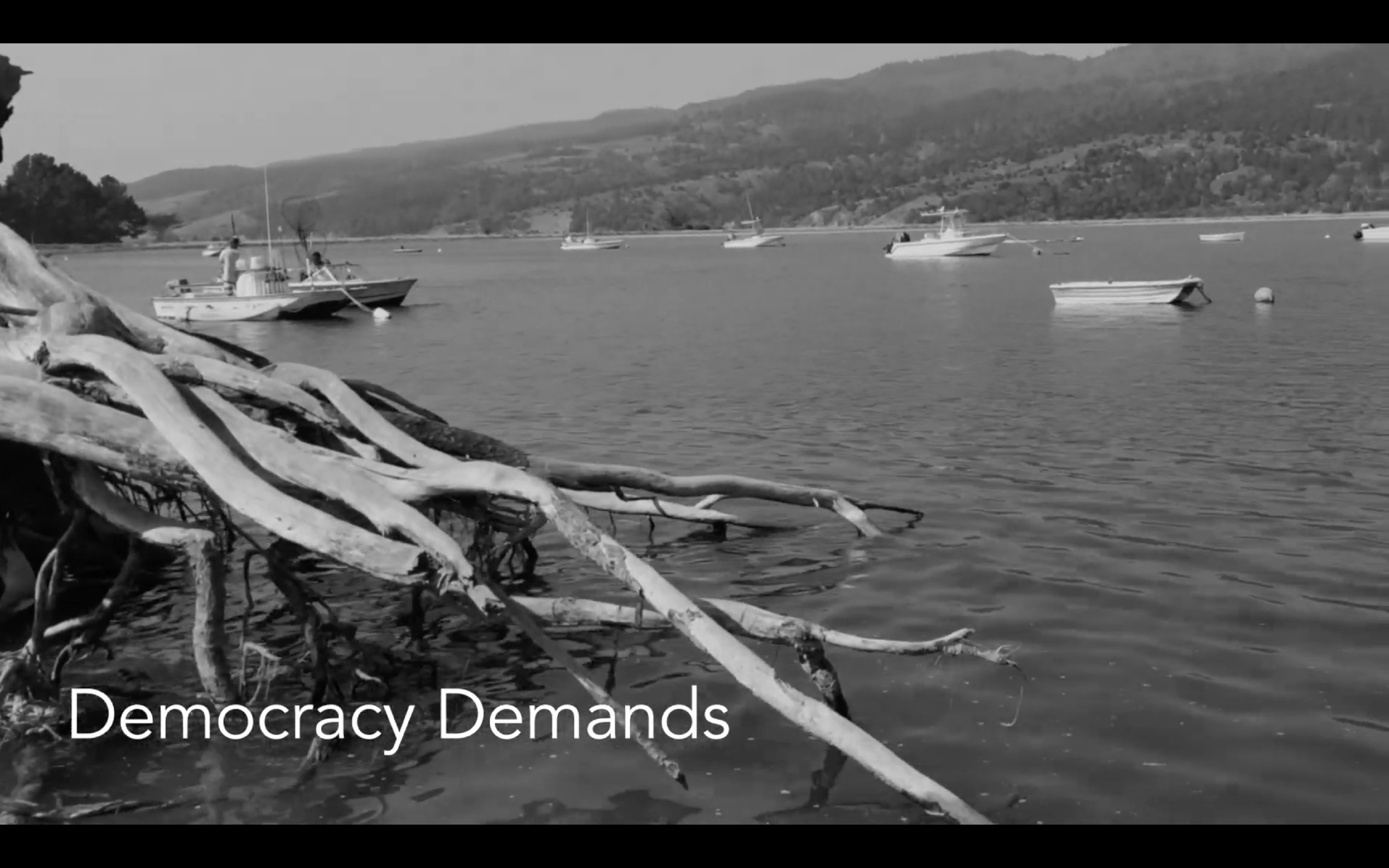 "Rachel Garlin's Poetic & Powerful ""Democracy Demands"""
