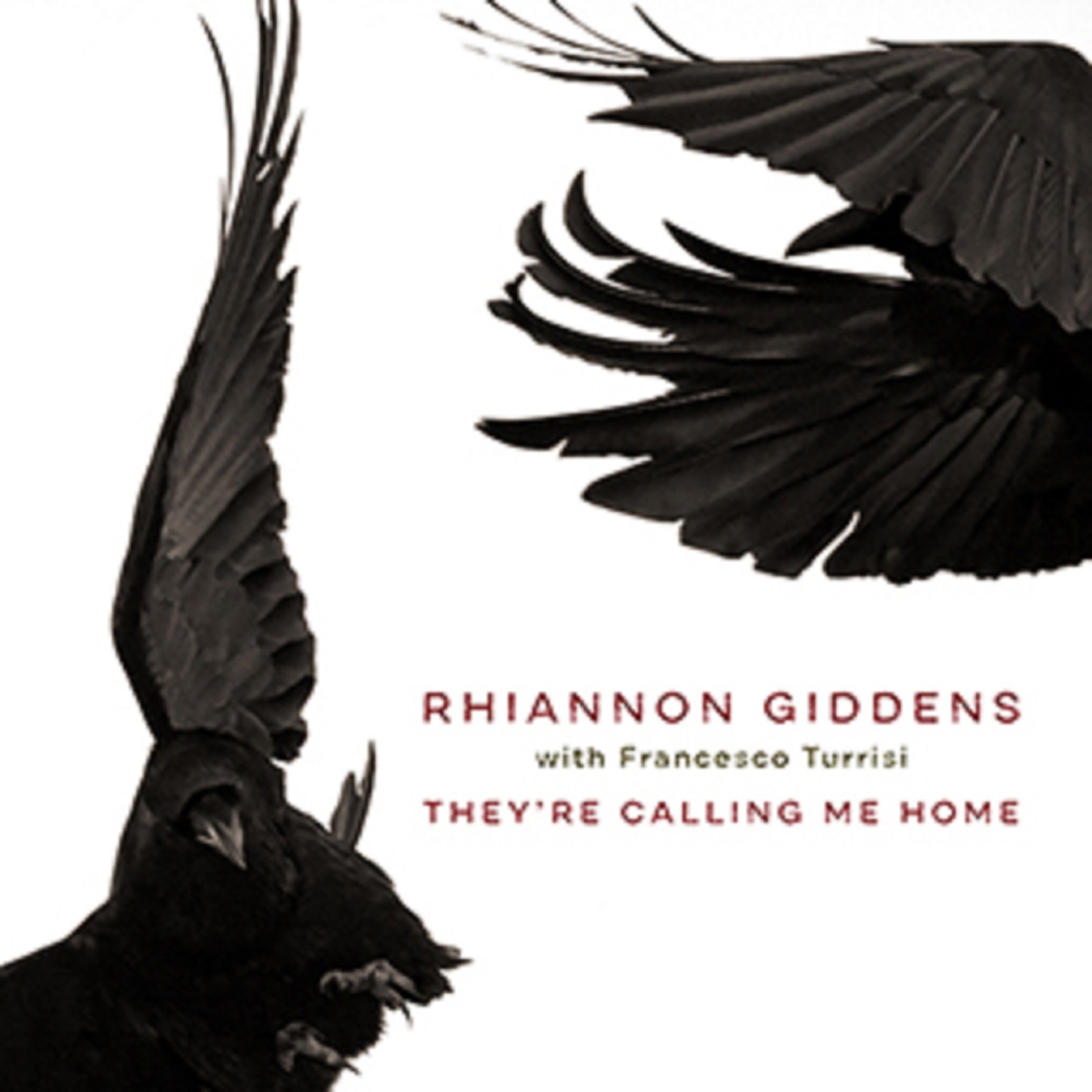 Rhiannon Giddens Announces New Album, They're Calling Me Home, Out April 9