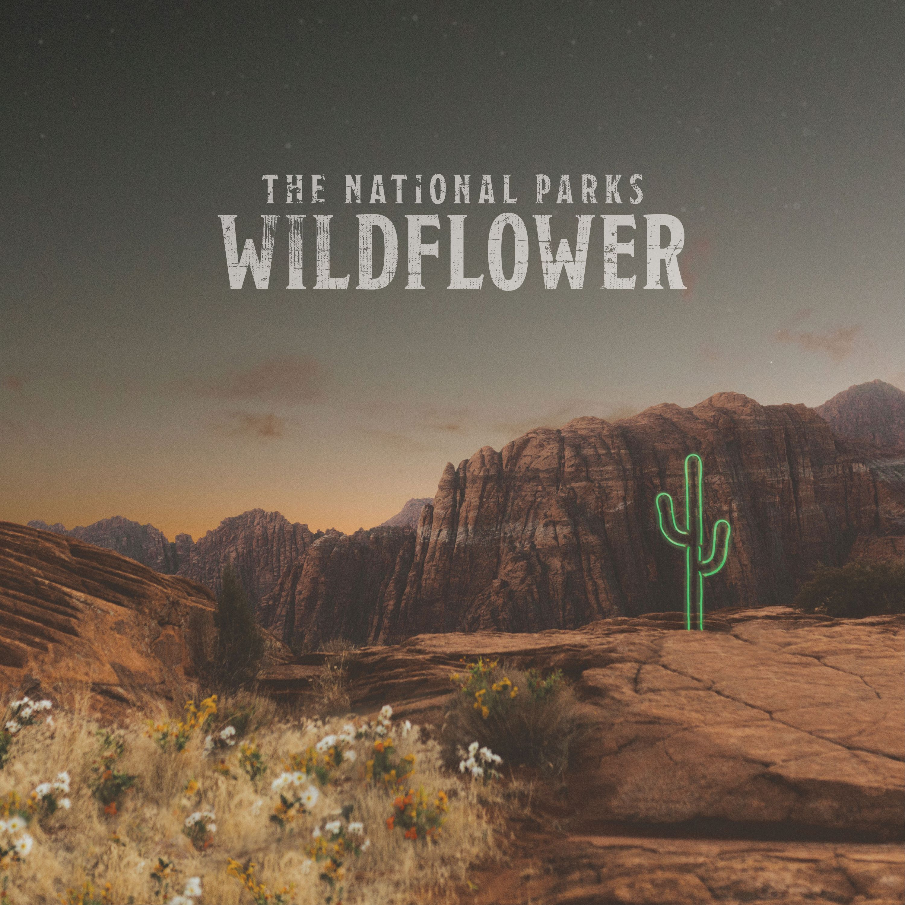 Wildflower | National Parks
