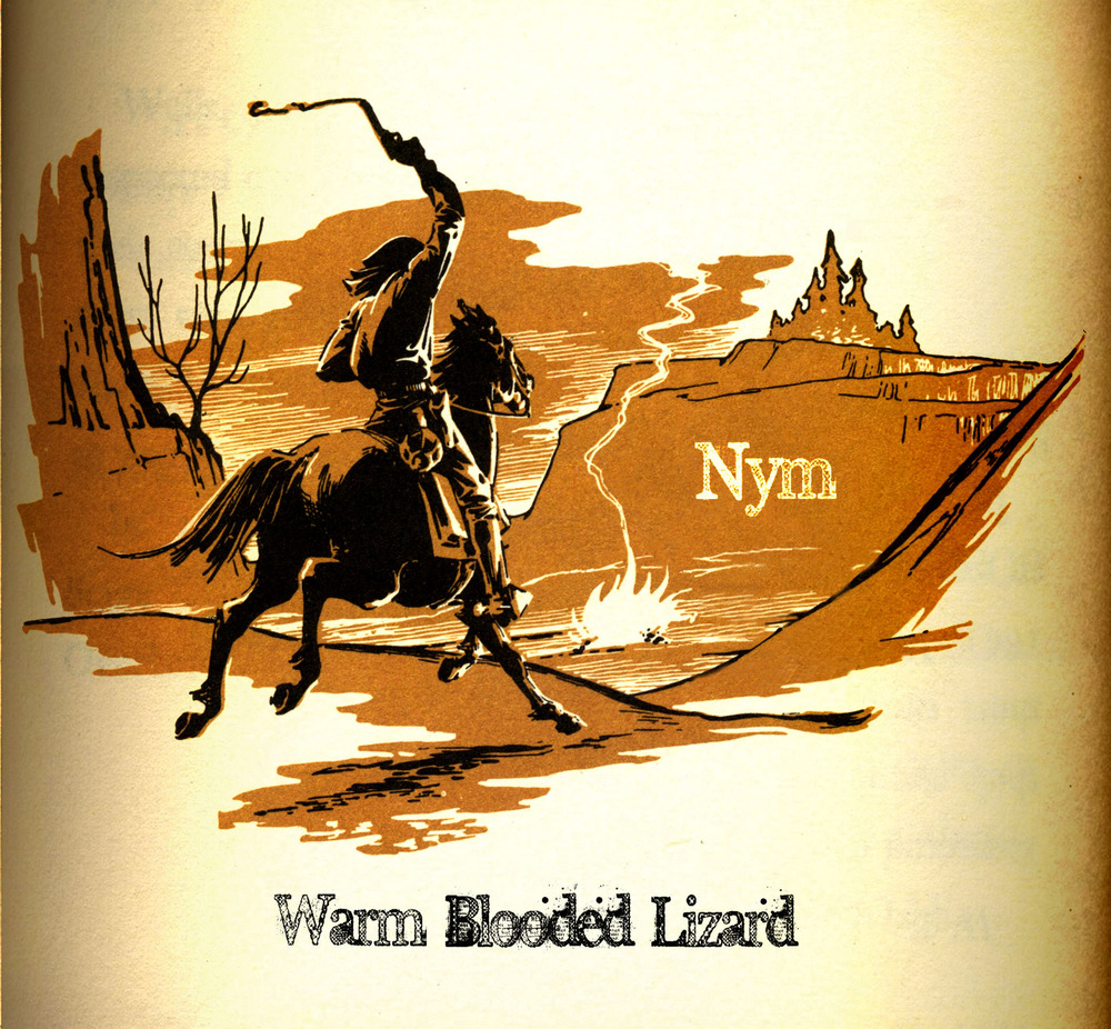 NYM | Warm Blooded Lizard | Album Review w/ Interview